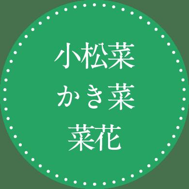 小松菜 かき菜 菜花